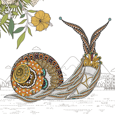 sumptuous: elegant snail coloring page in exquisite line Illustration