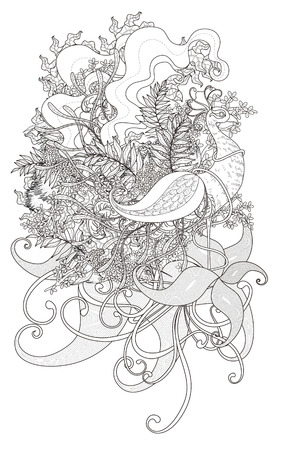 exquisite: attractive peacock coloring page with floral elements in exquisite line Illustration
