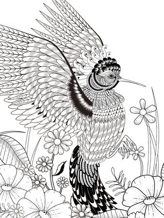 monochrome: lovely hummingbird coloring page in exquisite line