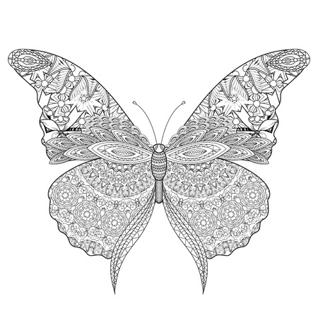beautiful butterfly coloring page in exquisite line