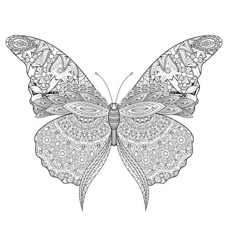 Schönen Schmetterling Malvorlagen in exquisite Linie Standard-Bild - 49729311