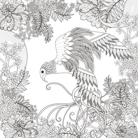 pajaros: hermosa volando para colorear página del ave con elementos florales en línea exquisita
