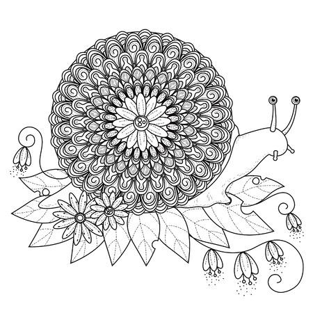 caracol: La página de suntuosa para colorear caracol en línea exquisita Vectores