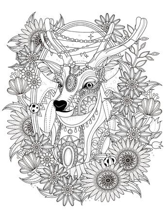 splendido cervo con corona di fiori - colorare adulti
