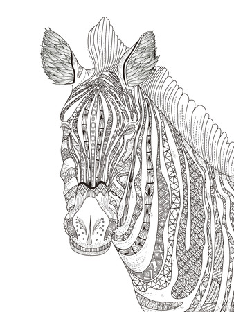 animals in the wild: fashion adult coloring page - zebra with attractive stripes Illustration