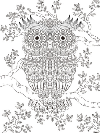 adult coloring page with gorgeous owl in the tree Vectores