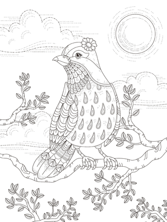 adult coloring page with lovely lady bird in the tree Vectores