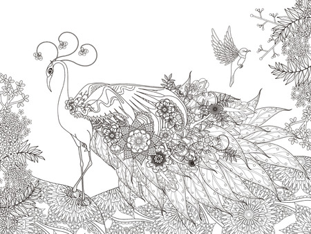 adult coloring page - gorgeous floral feather peacock