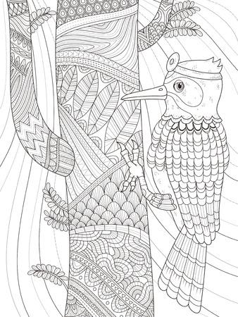 adult coloring page - woodpecker wears head mirror