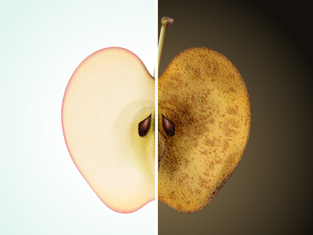 rotten fruit: comparison of apple 3D illustration - fresh and rotten apple for aging or skin care concept