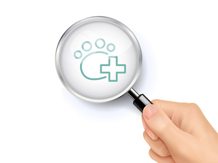 veterinary care: Veterinary care icon sign showing through by magnifying glass held by hand. 3D illustration.