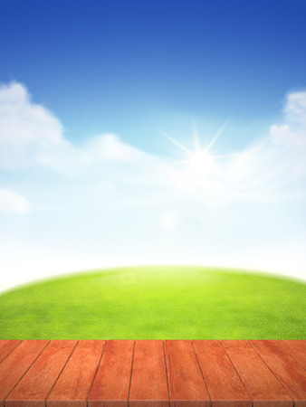 wood grass: blue sky and field of green grass background, 3d rendering wood plate