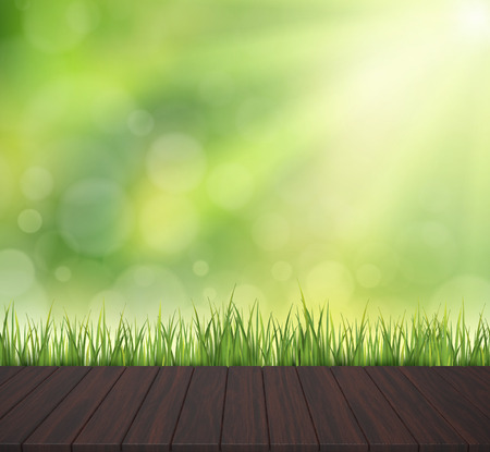 wood grass: close-up look at natural grass background, 3d rendering wood plate with sunshine, bokeh background