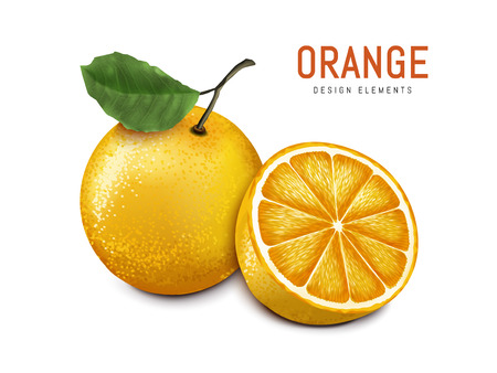 oranges with one sliced, isolated on white background, 3d illustration Ilustração