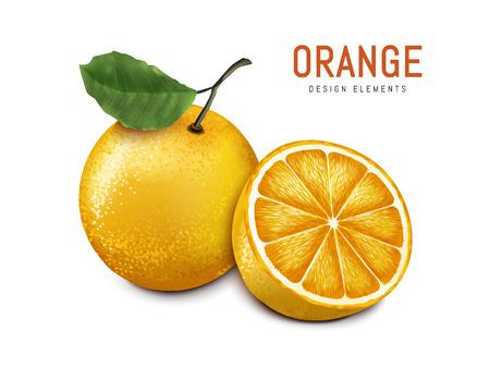 oranges with one sliced, isolated on white background, 3d illustration Illustration