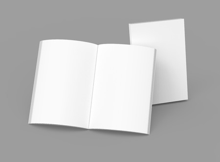 Blank book template, mockup for design uses in 3d rendering, one standing open book with closed one Stok Fotoğraf