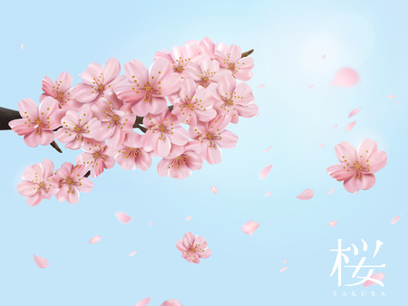 Cherry blossom branch and flying flowers isolated on shiny blue sky in 3d illustration, cherry blossom in Japanese word on the right side