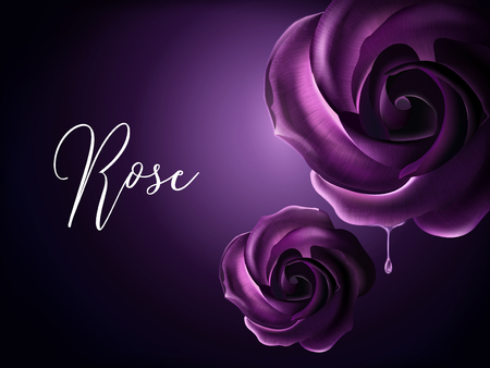 Purple roses elements, decorative floral elements on purple background in 3d illustration