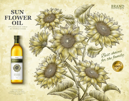 Sunflower oil ads design vector illustration Stok Fotoğraf - 95526202