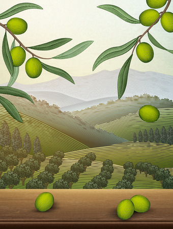 Orchard scene with olive leaves and wooden table with a spacious field