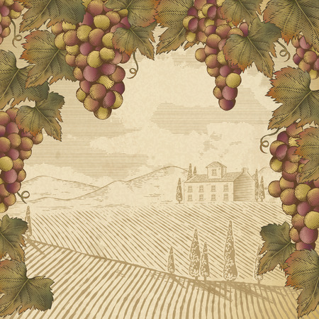 Engraving of grapes and leaves with a field scenery