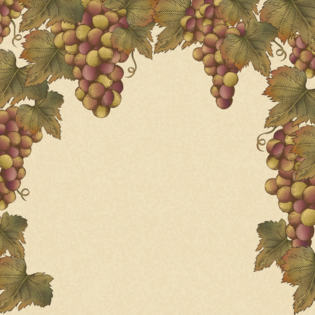 Grapes and leaves frame design illustration