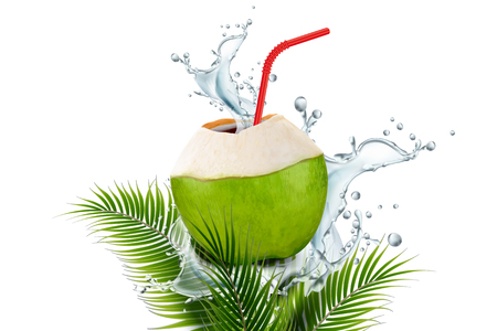 Coconut water with splashing drink and straw in 3d illustration on plam leaves white background Stockfoto - 100517718