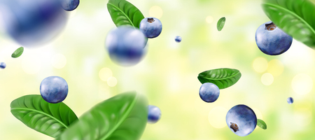 Blueberries and leaves dropped down from sky in 3d illustration on glitter green bokeh background