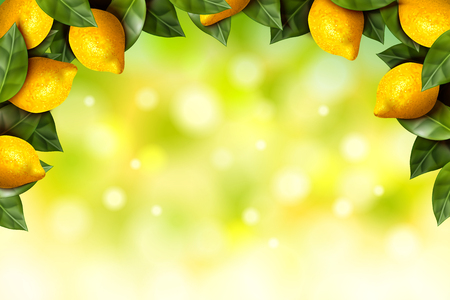 Refreshing lemon orchard frame with bokeh glittering green background in 3d illustration