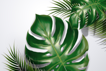 Summer background with tropical leaves and shadows in 3d illustration Ilustracja