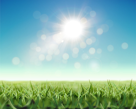 Refreshing nature background with shiny sunlight and green grassland in 3d illustration Illustration