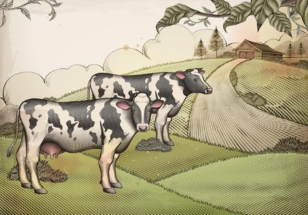 Conception de fond de bétail laitier et de terres agricoles de style gravure Vecteurs