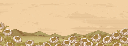 Chamomile floral field and mountains in engraving style