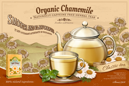 Organic chamomile tea ads with glass teapot set on retro engraving floral fields in 3d illustration