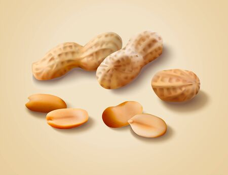 Dried peanut with shell in 3d illustration Illustration