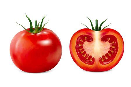 Delicious sliced tomato 3d illustration on white background