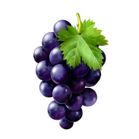 Pyszne dojrzałe winogrona 3d ilustracja na białym tle Ilustracje wektorowe