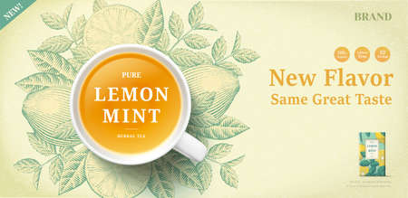 Lemon mint tea banner ads with engraving ingredients background, 3d illustration top view tea cup 向量圖像