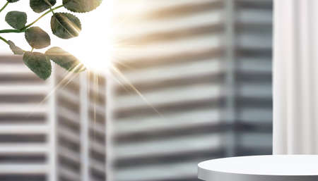 3d illustration of a product stage and plant branch in front of blurred skyscrapers with bright sunshine
