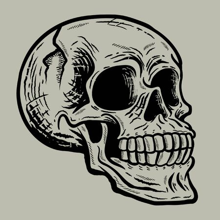 Retro vintage skull in side view angle vector illustration with grey background - vector