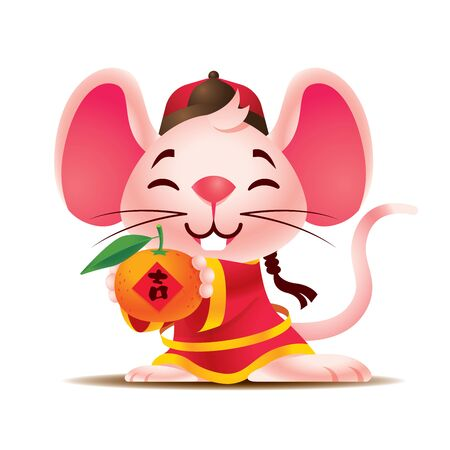Cartoon cute white rat with big ears wears traditional Chinese jacket hodling big chinese mandarin. Rat Chinese New Year 2020. The year of ratmicemouse. Translation: Lucky - Vector mascot