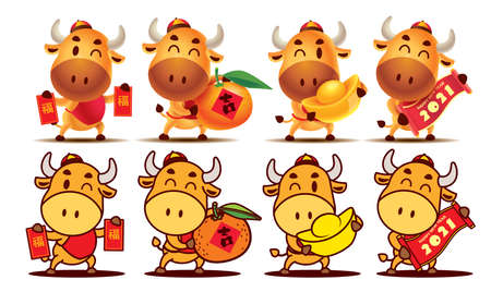 Happy Chinese New Year 2021. Cartoon Ox character series. Cartoon cute Ox character set holding Red Packet, Tangerine Orange, Gold Ingot and Scroll couplet. The year of the Ox. Translation: lucky