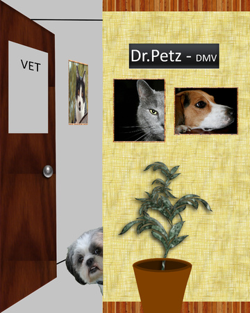This is a graphic illustration with a room in a veterinary office and a scared dog that is peeking around the doorway Stok Fotoğraf - 77736662