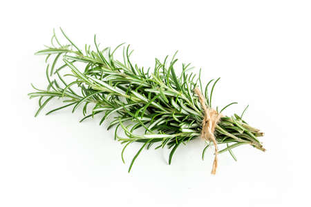 Green bundle of rosemary isolated on a white background. Herbs. Flat lay. Top view