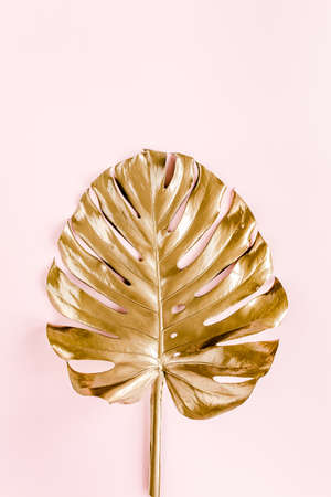Gold tropical palm leaves Monstera on pink background. Flat lay, top view minimal concept.