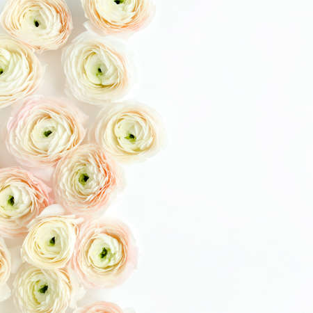 Floral background texture made of pink ranunculus flower buds on white background. Flat lay, top view floral background. Standard-Bild