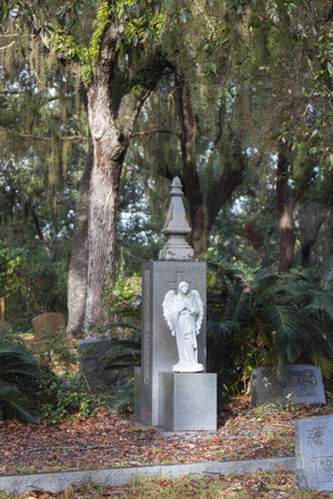 angel statue in graveyard with spanish moss
