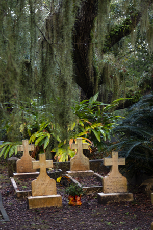 Cross tablet tombstones and grave curbs and large tree with spanish moss