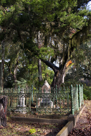 sepulchral monuments inside grave fence and grave curbs and large tree with spanish moss