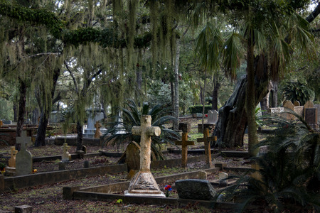 cemetery with many tombstones, monuments, and trees with spanish moss